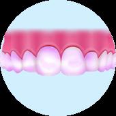 口腔内の汚れを確認