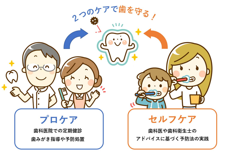 プロケアとセルフケアで歯を守る